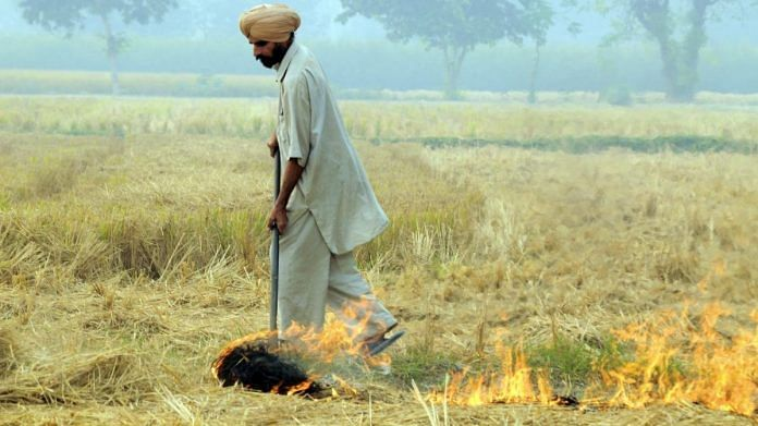 MGNREGA won't make stubble burning go away, says govt panel
