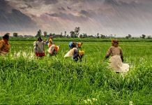 Latest news on farmer in India | ThePrint.in