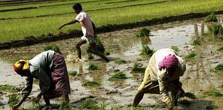 Farmers in Karnataka