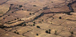 Farm land on the outskirts of Gwalior, Madhya Pradesh   Udit Kulshrestha/Bloomberg