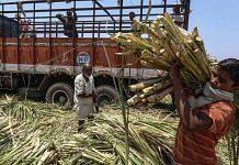 Sugarcane farmers in Maharashtra