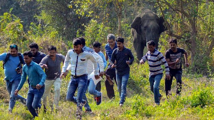 Locals run for cover after being chased by wild elephants in Howrah district of West Bengal | PTI