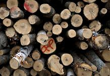 A large pile of unprocessed logs| Daniel Acker/Bloomberg