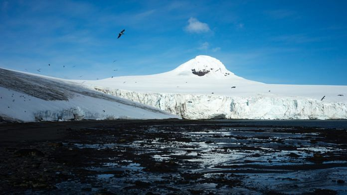 Birds fly over the Quito Glacier on Greenwich Island, Antarctica