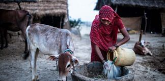 General Images of Life And Nutrition In Uttar Pradesh