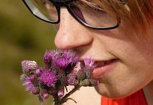Human nose has about 6 million sensors and capability to detect nearly one trillion odours