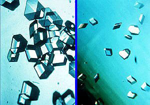 Insulin crystals grown in space (left) are larger and better ordered than those grown on Earth (right)