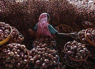 The APMC wholesale market in Lasalgaon, Maharashtra | Photo: Dhiraj Singh/Bloomberg