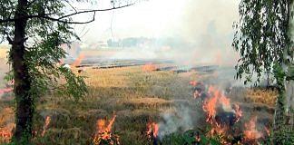 A file photo of stubble burning in Tarn Taran Sahib town. | Photo: ANI