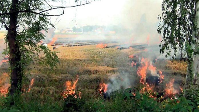 A file photo of stubble burning in Tarn Taran Sahib town.   Photo: ANI