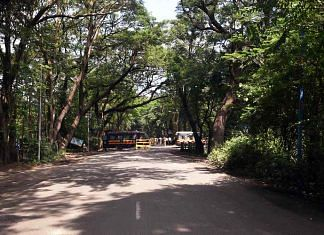 stand guard outside the Aarey Colony