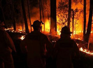 A wildfire burns between the towns of Orbost and Lakes Entrance in east Gipplsland on 2 January 2020 in Australia   Bloomberg