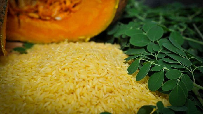 Golden rice is seen as a tool to fight Vitamin A deficiency