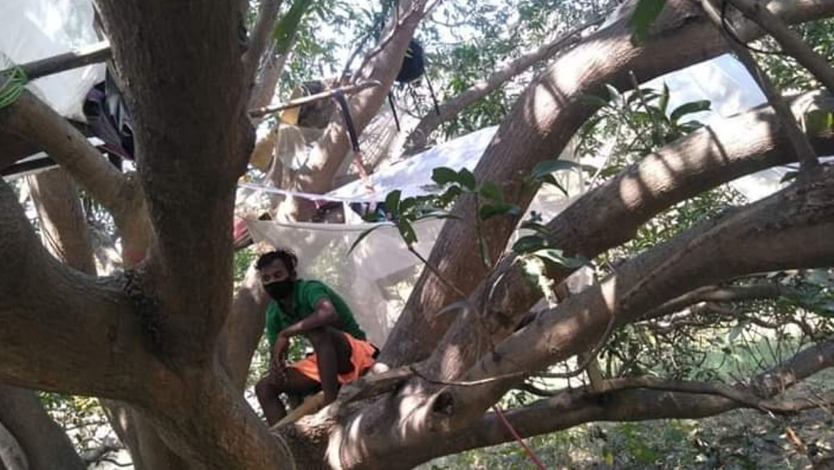 Migrant labourers in Purulia self-isolate themselves on trees | By special arrangement