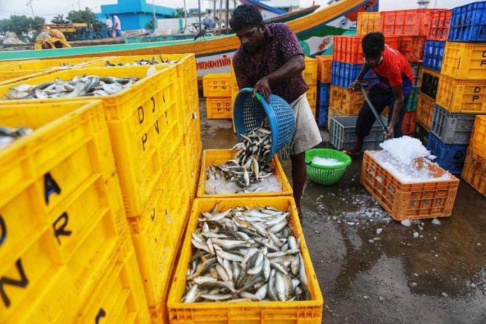Workers at the Kasimedu fish market   Manisha Mondal   ThePrint
