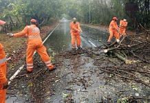NDRF personnel removing uprooted trees after the landfall of Cyclone Nisarga in Raigad Wednesday. | Photo: ANI