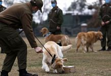 A police officer and trainer works with a dog sniffing a box with a sample at Carabineros de Chile Dog Training School in the Parque Metropolitano | Bloomberg