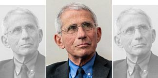 Dr Anthony Fauci, the chief infectious diseases expert in the US | Photo: Wikimedia Commons