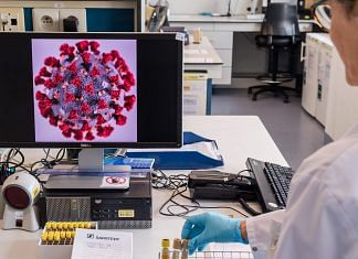 A magnified coronavirus germ is displayed on a monitor during coronavirus patient sample detection tests in the virology research labs at UZ Leuven university hospital in Leuven, Belgium | Bloomberg Photo