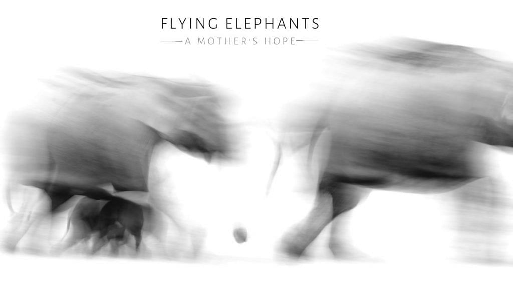 A poster for Flying Elephants – A Mother's Hope   By Special Arrangement