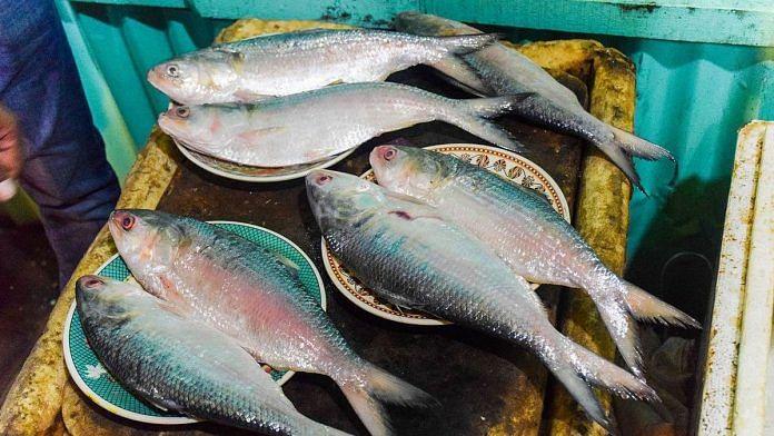 Representational image for hilsa fish | Photo: Commons