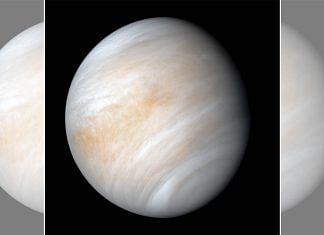 Venus | Wiki