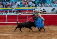 Representational image of bullfighting | Wikimedia Commons