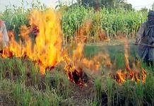 Farmers in Punjab's Tarn Taran burn stubble in their fields   Photo: ANI