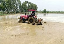 Representational image. | A file photo of a farmer plowing his fields with a tractor in Jalandhar. | Photo: ANI