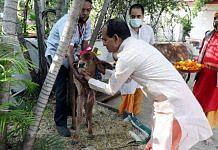 Madhya Pradesh CM Shivraj Singh Chouhan celebrates the 'Gopashtami' festival at his residence in Bhopal on 22 November | Photo: ANI