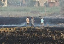 An agricultural field set on fire to burn stubble at Pasiana on Patiala-Sangrur Highway in Punjab | Suraj Singh Bisht | ThePrint