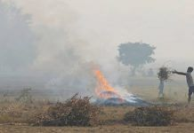 Stubble burning has increased 40% in Punjab this year | Photo: Suraj SIngh Bisht | ThePrint