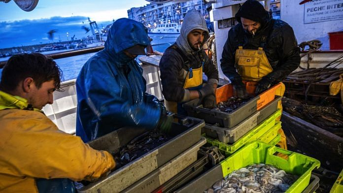 Fishermen sort and clean freshly catch fish in the harbor in Sete, France, on Dec. 1, 2020. | Bloomberg