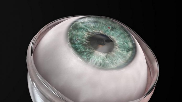 Synthetic cornea returns sight to blind patient