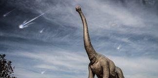 Representational image of a dinosaur. | Photo: Pxhere