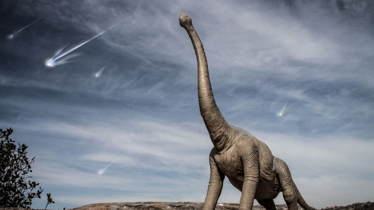 Space dust in Chicxulub crater confirms that asteroid killed off dinosaurs