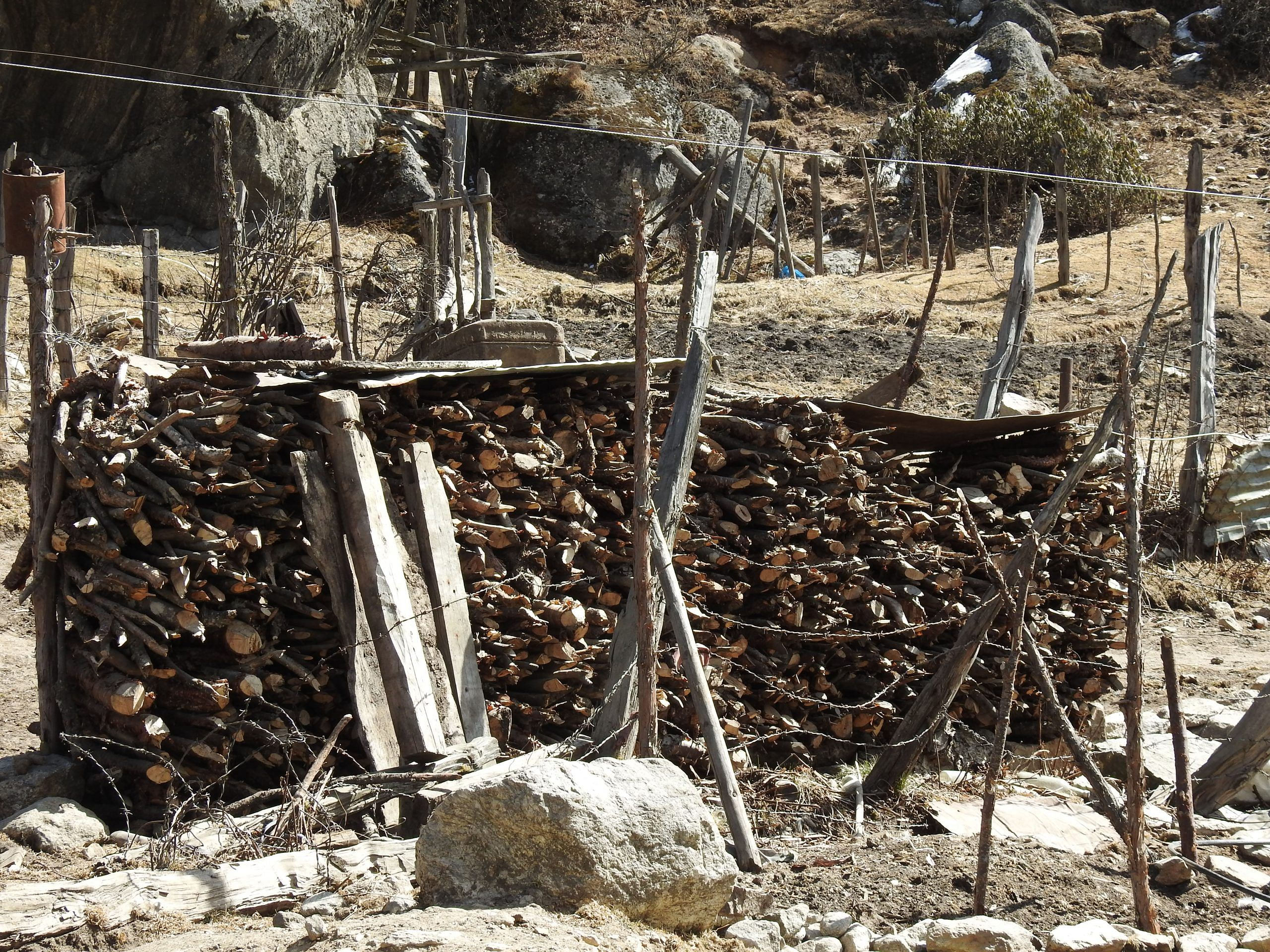 Fuelwood in Sikkim | WWF