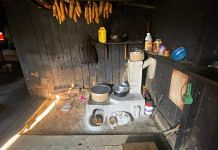The improved cookstove | WWF