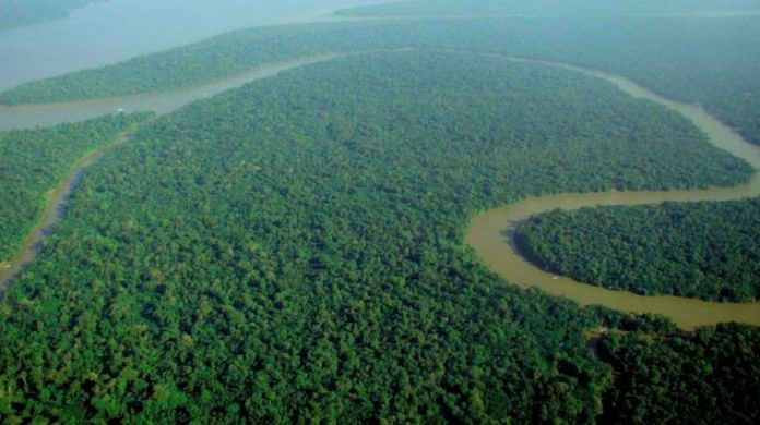 Aerial view of the Amazon rainforest | Commons