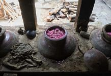 Pink roses being prepared for extraction of essential oils through hydro-distillation in Kannauj   Photo: Manisha Mondal   ThePrint