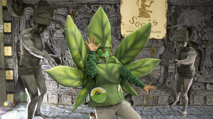 An attendee dressed like a marijuana leaf stands with Pak' al Seeds mascots during the ExpoWeed exhibit at the World Trade Center in Mexico City, Mexico   Photographer: Susana Gonzalez   Bloomberg