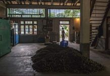File photo | A pile of organic ginger lies on a warehouse floor in Rangpo, east Sikkim |Prashanth Vishwanathan/Bloomberg