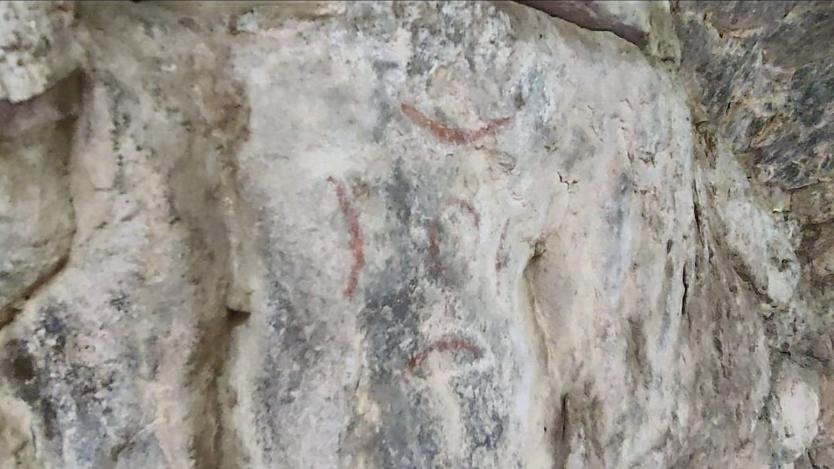 A specimen of the paleolithic paintings found in the Aravallis | Shubhangi Misra | ThePrint