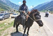 Farooq Ahmed Bhatt (40) is among the porters who offer tourists horse rides around Sonmarg | Praveen Jain | ThePrint