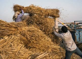 Farmhands operate a thresher while harvesting a wheat field in the Panipat district of Haryana | Photographer: Prashanth Vishwanathan | Bloomberg