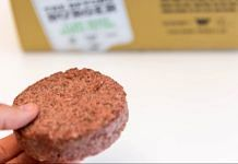 Representative image of a plant-based meat patty. | Photo credit: Flikr/Marco Verch