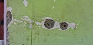 (Representational image) Bullet holes in the walls of the school in Srinagar where a principal and the teacher were killed earlier this month | Photo: Suraj Singh Bisht/ThePrint